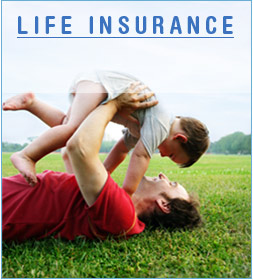 Life Assurance Quote